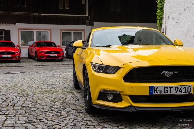 Mustang fleet