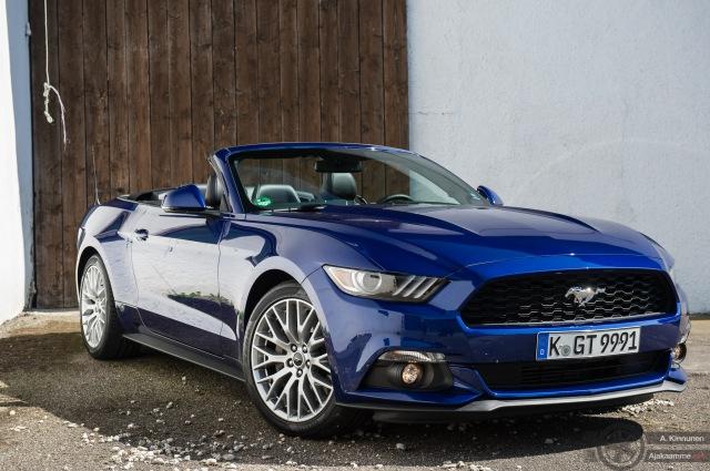 Mustang Avo